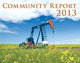 Community Report 2013